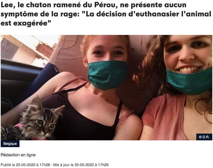 Vu sur la DHnet: Lee, le chaton ramené du Pérou, ne présente aucun symptôme de la rage: «La décision d'euthanasier l'animal est exagérée»