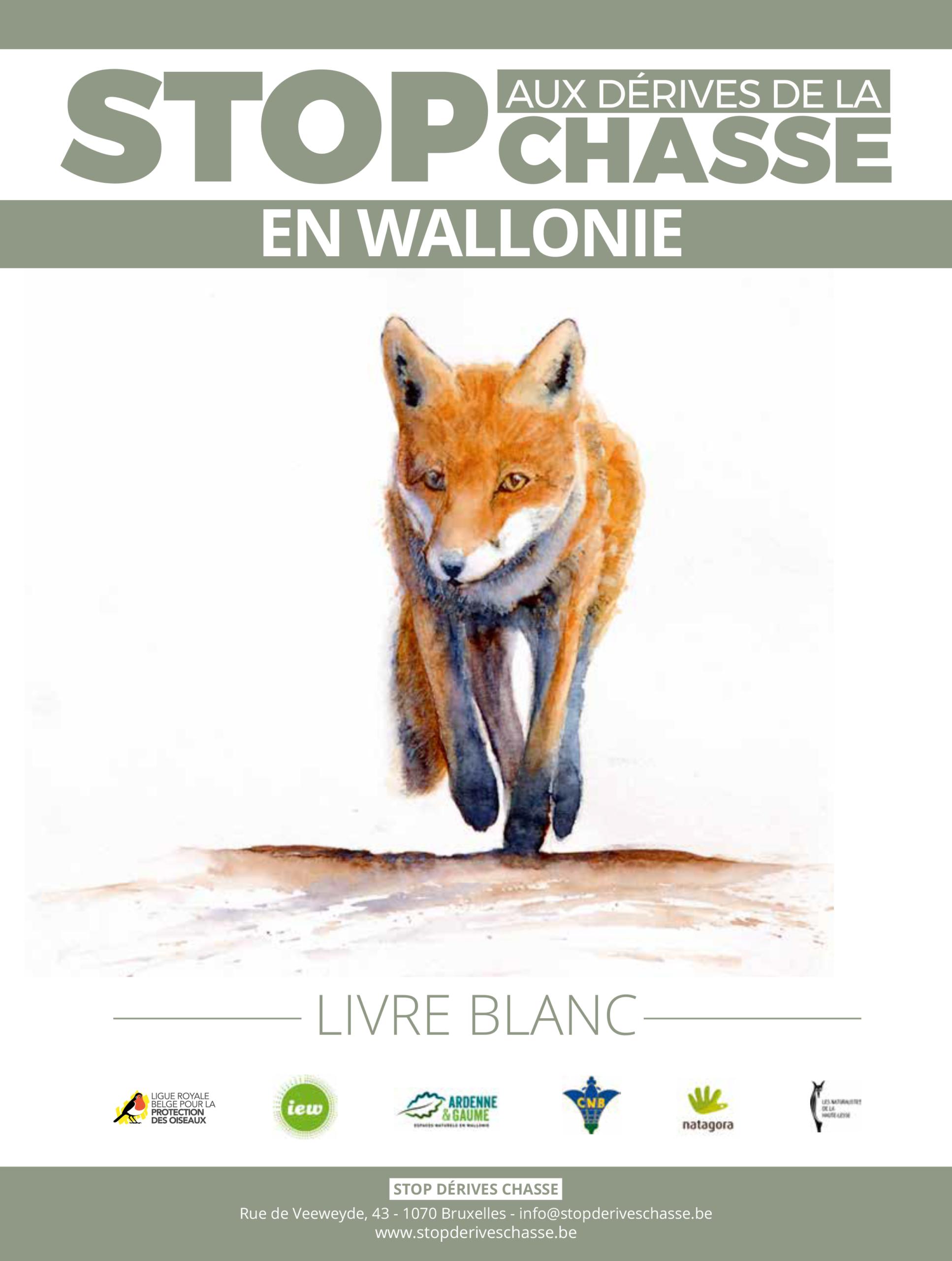 Devant l'inaction des décideurs politiques wallons, le Collectif « Stop Dérives Chasse » publie un Livre blanc !